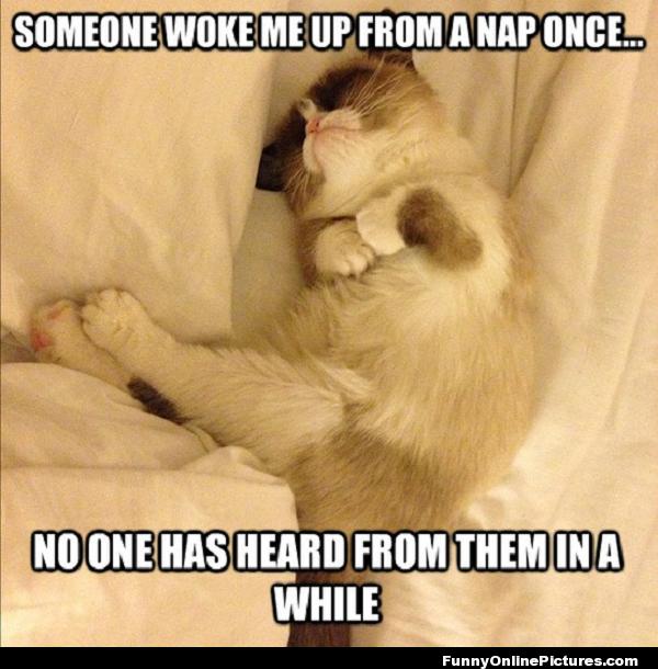 woken from a nap
