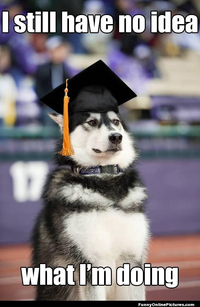 Graduate and Professional