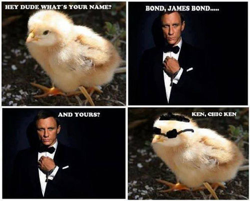 Funny James Bond Meme Picture