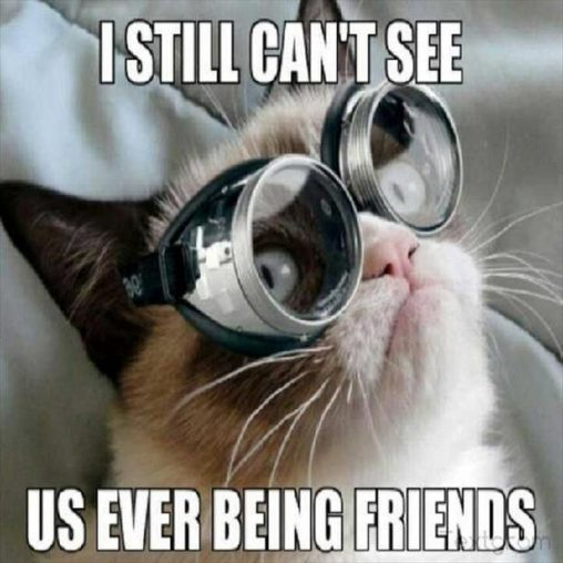 I still can't see us ever being freinds